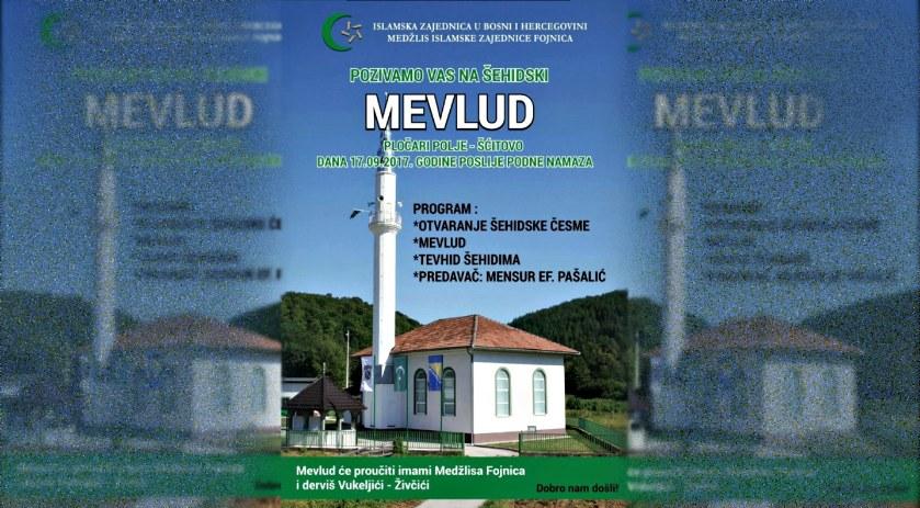 mevlud1 839x463